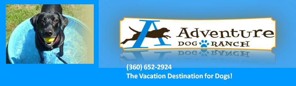 Adventure Dog Ranch Logo